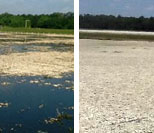 Wastewater Treatment Plant Water Discharge & System Management and Sludge Reduction (LA)